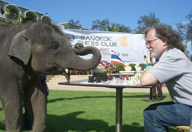 elephant_chess